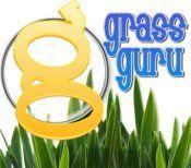 GrassGuru.jpg